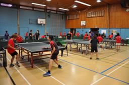 Tennis de table - Ping pong 2021