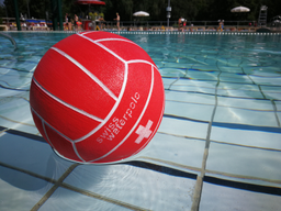 Natation et waterpolo 2020